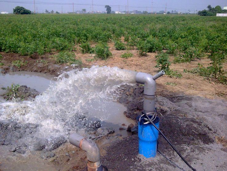 屏東縮水工程